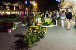 eventi Milano Marittima, 26 settembre 2015